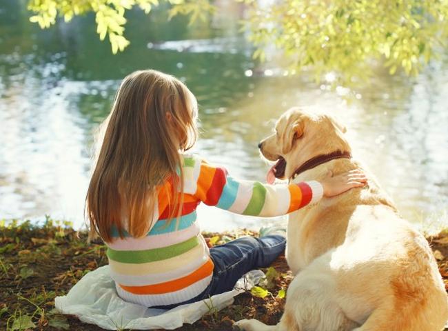 Cách Giữ Trẻ An Toàn Khi Ở Gần Chó