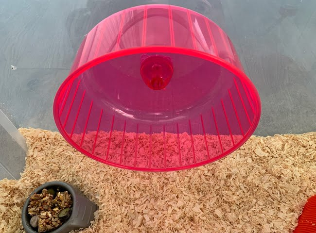 chat lieu banh xe chuot hamster