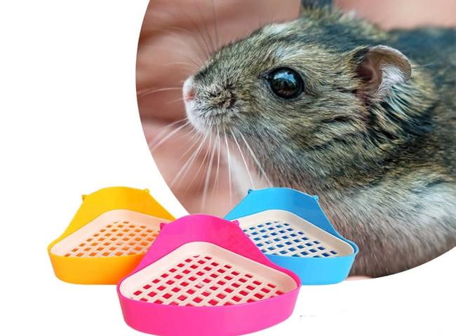 Khay vệ sinh cho chuột hamster