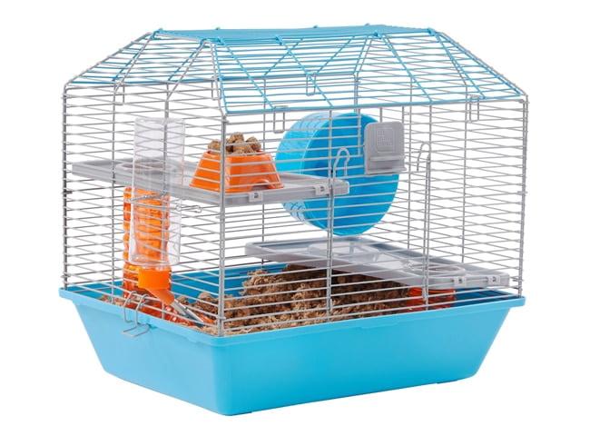 kich thuoc long chuot hamster