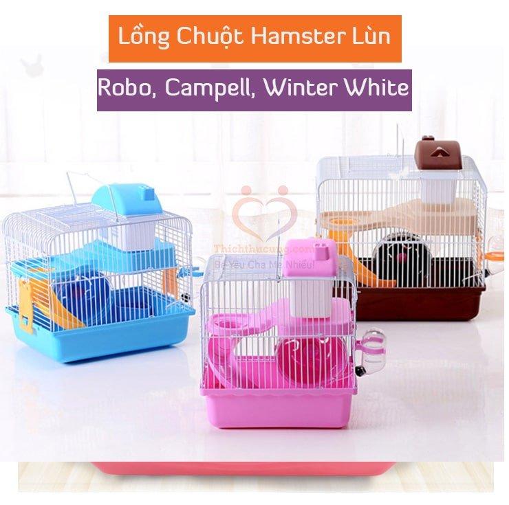 Mua Lồng Cho Chuột Hamster Lùn robo, campell, winter white